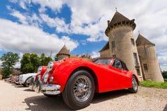 Savigny Jaguar fotografie stock