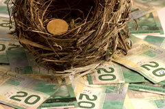 Saving. Egg nest concept picture; a bird nest sitting on a layer of twenty dollar bills with a Canadian dollar coin (loonie) on the edge Stock Images