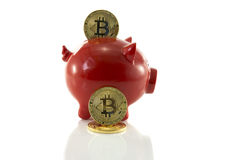 Saving bit coins in money pig Stock Photography