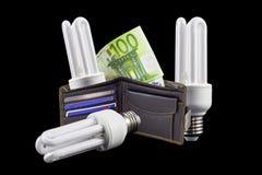 Saving bulb Royalty Free Stock Photo