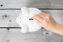 Saving concept with a piggy bank Royalty Free Stock Image