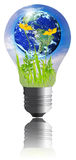 Saving the earth concept. The world with grass inside the light bulb  isolated on white background. Earth globe image provided by NASA Stock Image