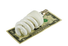 Saving Energy. Compact fluorescent light bulbs and dollars isolated on white Royalty Free Stock Images