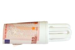 Saving Energy (w/ path). An energy saving light bulb with a one euro bill surrounding the base Stock Photos