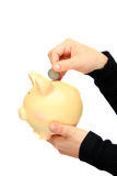 Saving euro on a piggy-bank. Saving euro in a piggy-bank isolated on a white background Stock Photos