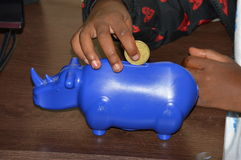 Saving for the future. Hand of a young girl putting a coin inside a rhino shaped coin box Stock Photo