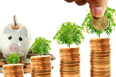 Saving and growing money concept idea Royalty Free Stock Images