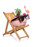 Saving for a holiday piggy bank cut out Stock Photography