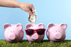 Piggy bank row saving vacation retirement planning Stock Image