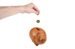 Saving a lot of money in piggy bank. Insert a lot of money in the piggy bank to save Royalty Free Stock Images