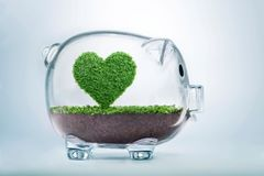 Saving love, growing heart concept. Love nature concept, with grass growing in the shape of a heart, inside a transparent piggy bank, symbolising the need to Royalty Free Stock Photography