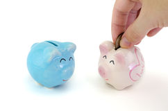 Saving, male hand putting a coin into piggy bank. On white background Royalty Free Stock Photography