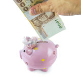 Saving, male hand putting a money into piggy bank isolated on white background Royalty Free Stock Photography