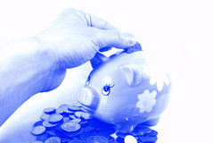 Saving money. Hand saving money in piggy bank (monochrome version Royalty Free Stock Photography
