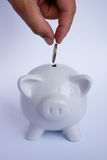 Saving money. In piggy bank Stock Image