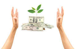 Saving money concept Stock Image