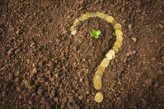 Saving money concept and money coin shape question mark. With tree growing for business royalty free stock photos
