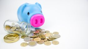 Saving money for education, pink piggy bank with many coin on de. Sk Royalty Free Stock Photography