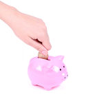 Saving money, hand is putting coin into piggy bank Royalty Free Stock Photo