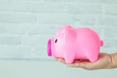 Saving money in a piggy bank. Saving money for the future in a piggy bank Royalty Free Stock Image