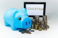 Saving money in a piggy bank for the future. Piggy Savings for the Future Royalty Free Stock Images