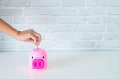 Saving money for piggy. Saving money for the future in a piggy bank Stock Photography