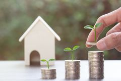 Saving money or property investment concept. A man hand putting coin into rising stack of coins with plant on pile coin on wood. Table with a small house model royalty free stock photo