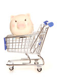 Saving money on your shopping. Cutout Royalty Free Stock Images