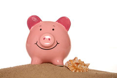 Saving money on your summer holiday piggy banks Royalty Free Stock Image