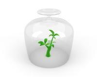 Saving nature concept Stock Photography