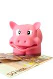 Saving Pig - 1 Stock Image