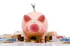 Saving pig Stock Image