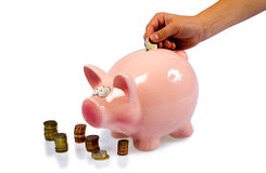 Saving pig. A hand is putting a 2 euro coin into a saving pig Stock Image