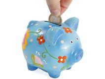 Saving pig Royalty Free Stock Photos