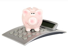 Saving pig is on calculator Royalty Free Stock Photo