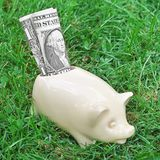 Saving pig on grass Royalty Free Stock Photography
