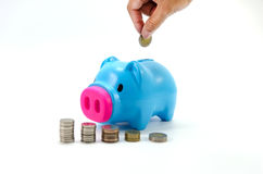 Saving pig with money and  calculator Royalty Free Stock Photos