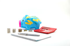 Saving pig with money,  calculator and text: house,car, travel, shopping, happy, land. Royalty Free Stock Photography