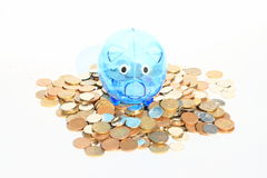 Saving pig standing on lots of money Stock Image