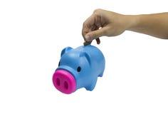 Saving pig toy. Isolated on white Stock Image