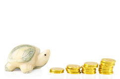 Saving tortoise. A tortoise is going to save money step by step Stock Images