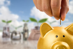 Saving your money. With insert coin to piggy bank Stock Photo