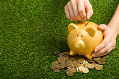 Saving your money with piggybank Stock Photos