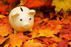 Savings Royalty Free Stock Photo