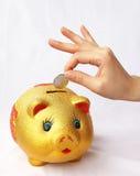 Savings. Happy life need to start saving every penny Stock Photo