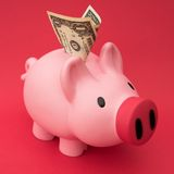 Savings... Royalty Free Stock Photos