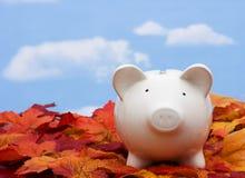 Savings Stock Image