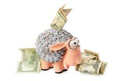 Savings box and money Royalty Free Stock Photo