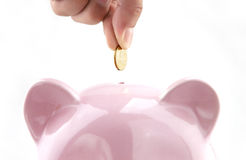 Savings,concept Royalty Free Stock Image