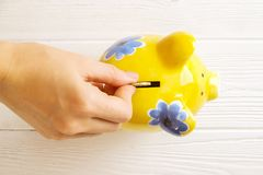 Savings concept. Piggy bank and money on dark wood background Royalty Free Stock Images